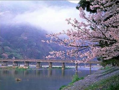 4-6月日本北海道旅游_15年春夏季日本旅游预订价格