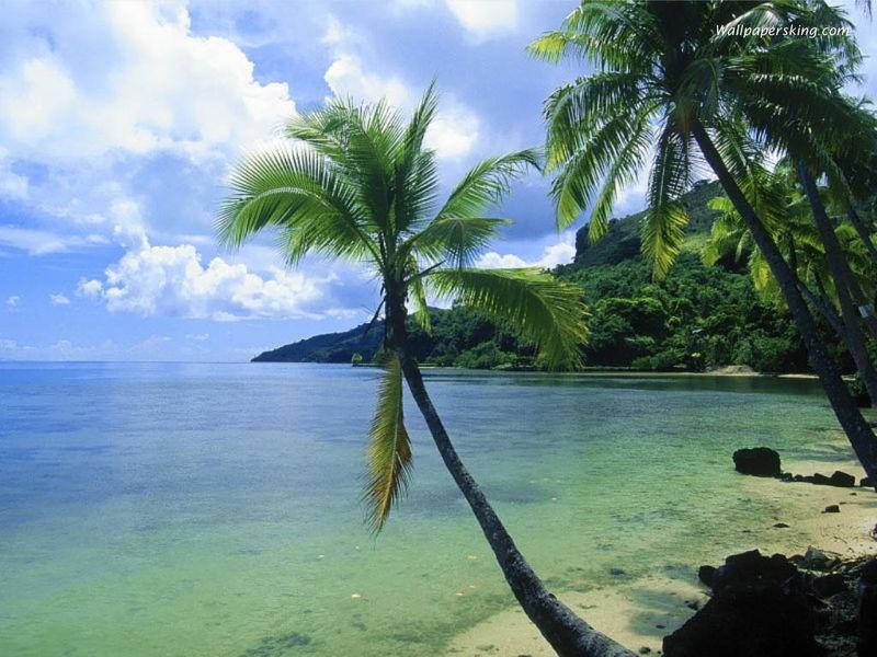 南沙群岛风景图片大全