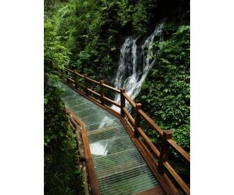永定区  标签: 旅游景点 风景区  西线玻璃栈道共多少人浏览:2243393
