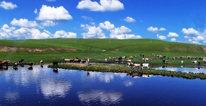 呼伦贝尔大草原,满洲里,长白山天池,沈阳,长春,哈尔滨