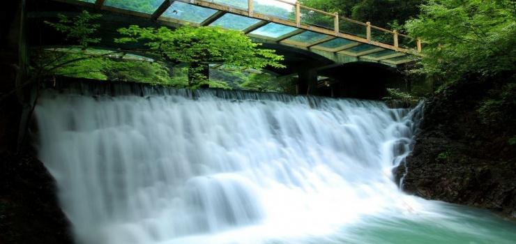 行程单: 【畅享vip】张家界大峡谷,凤凰,天门山玻璃