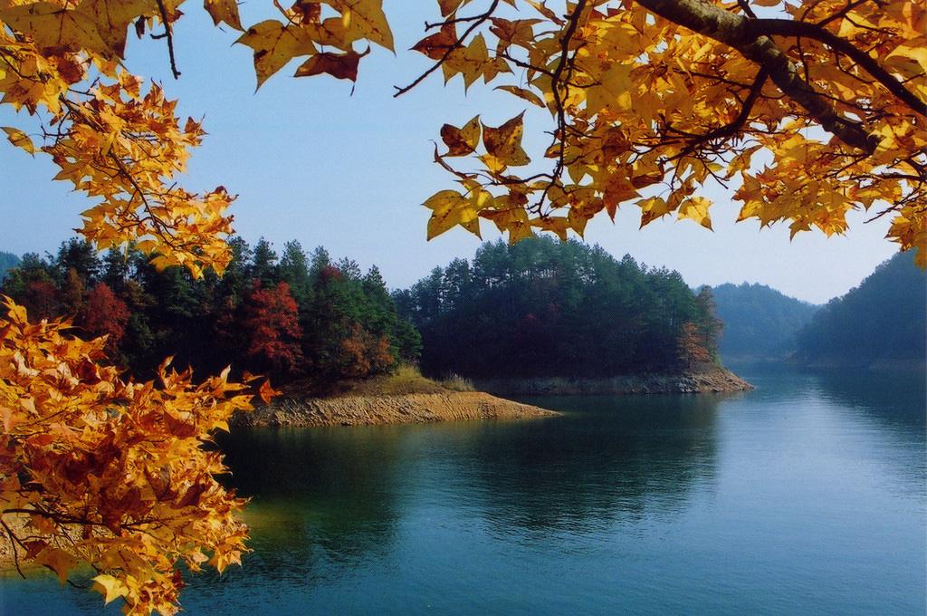 【绿城度假酒店湖景房】千岛湖森林氧吧,自行车骑行纯玩3日游(可选