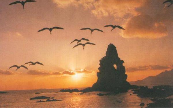 这就是著名的【石老人海水浴场】(约50分钟)自由活动