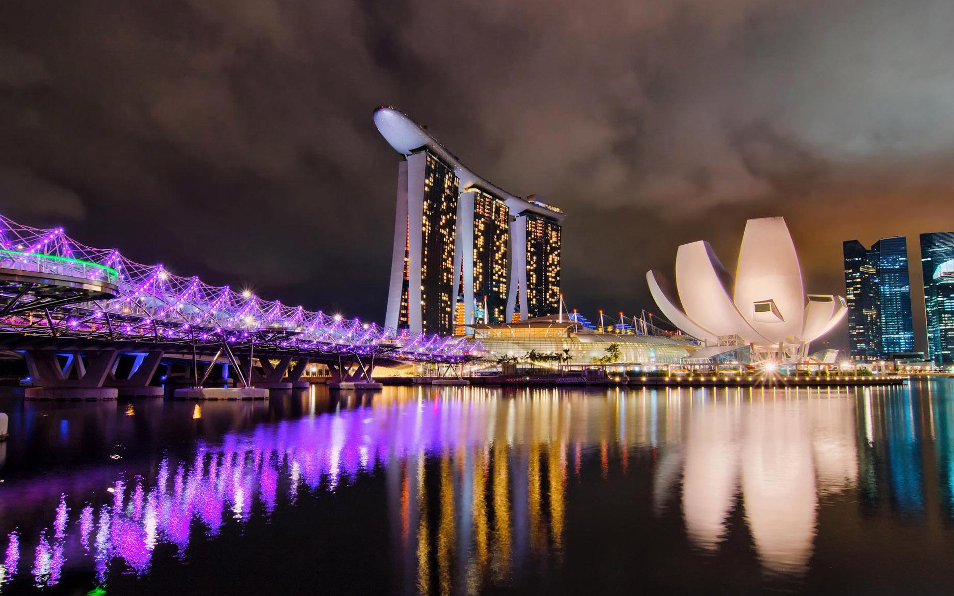 新加坡蔻驰包包 花朵水桶包
