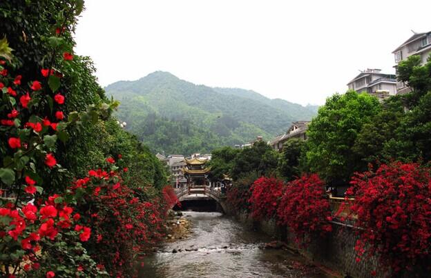 """去青秀山风景区感受一下""""绿肺"""";入夜去民歌湖边点上一杯咖啡静静的"""