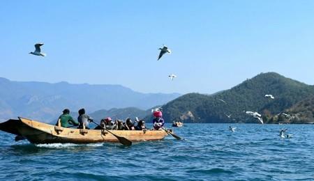 观景台】(俯瞰泸沽湖全景),划 【猪槽船】游览 【里务比岛】(60分钟)