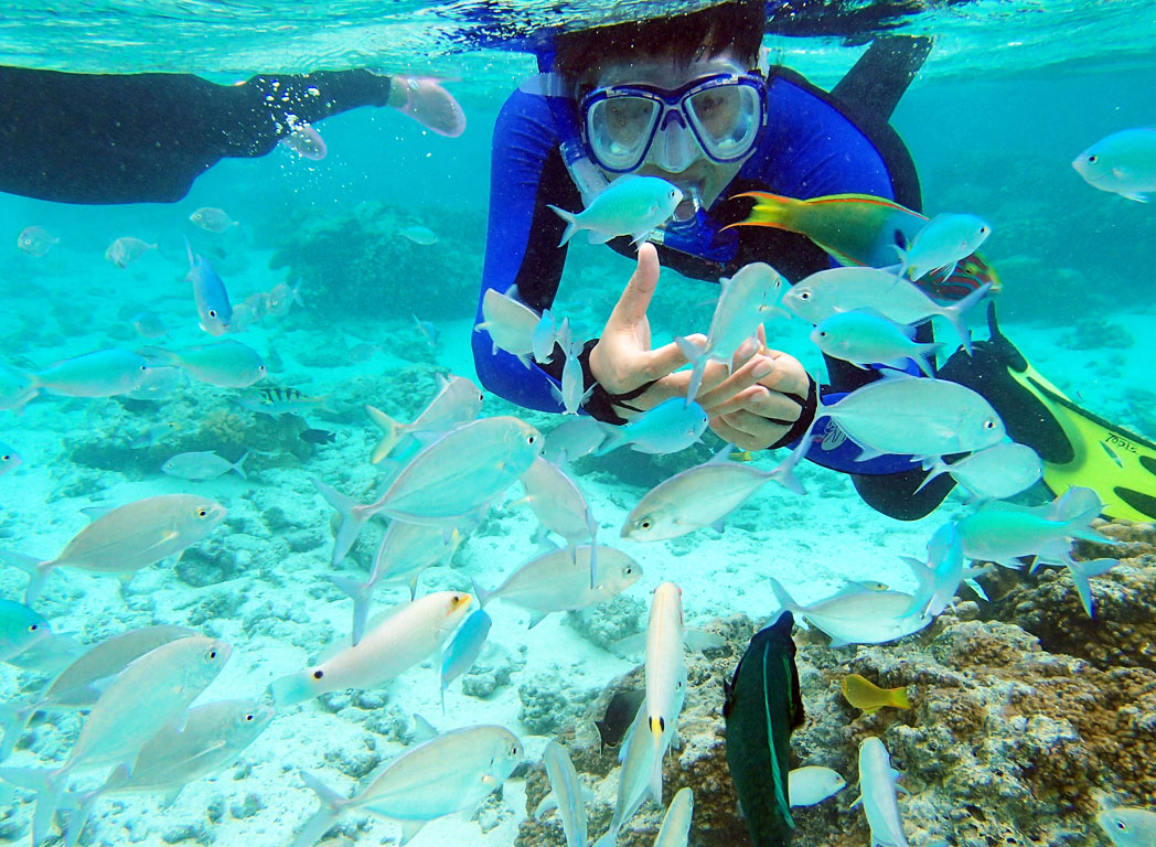 壁纸 海底 海底世界 海洋馆 水族馆 桌面 1048_768