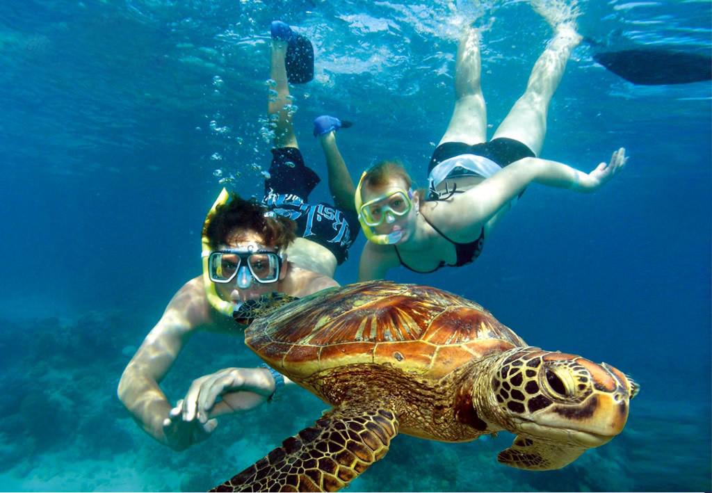 壁纸 海底 海底世界 海洋馆 水族馆 1024_709