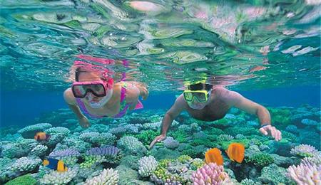 壁纸 海底 海底世界 海洋馆 水族馆 桌面 450_260