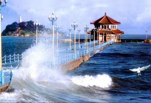 【青岛啤酒博物馆】 【烟台鲸鲨馆】 【烟台养马岛】 【威海小石岛】