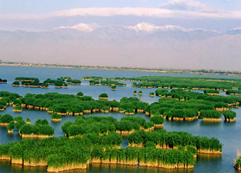 【暑期】宁夏沙湖,中卫沙坡头,贺兰山岩画, 西部影视城双飞4日游