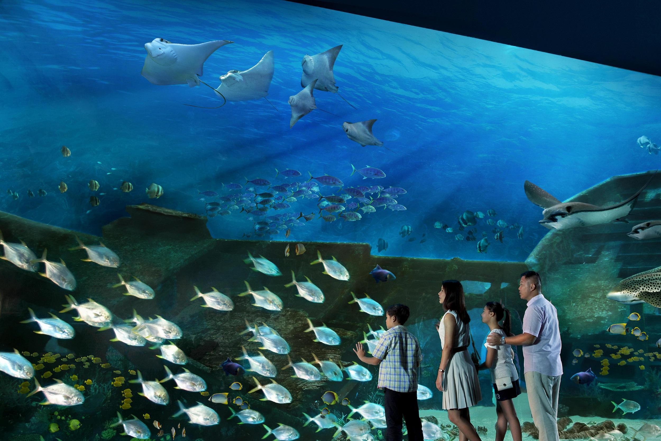 某海洋馆内在水里生活的动物1240种,能在陆地生活的动物有820种,其中