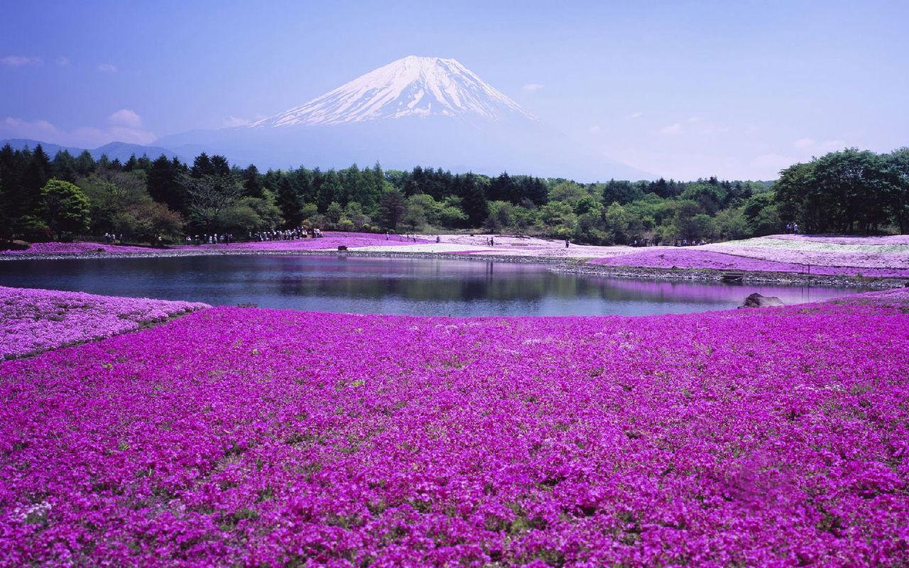 日本风景_【国际机票】南京日本北海道4日往返含税机票(中国东方航空,2件托运