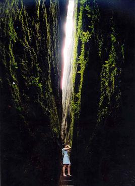 武夷山天游峰、九曲溪漂流、虎啸岩2晚3日跟团游(梦幻武夷、醉美高铁 挂牌四星)