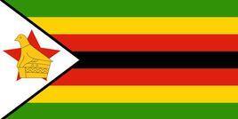 【单次】津巴布韦个人旅游签证(全国受理 极简材料 仅需护照+照片+身份证 顺丰回邮)