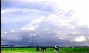 【印象草原】哈尔滨、呼伦贝尔大草原、莫日格勒河畔、额尔古纳湿地、醉美边防公路、异域边境小城满洲里双飞双卧6日游