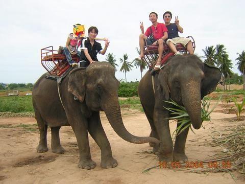 泰国清迈+清莱4晚5日游(CZ直飞,精选酒店,放水灯,骑大象,地道美食)