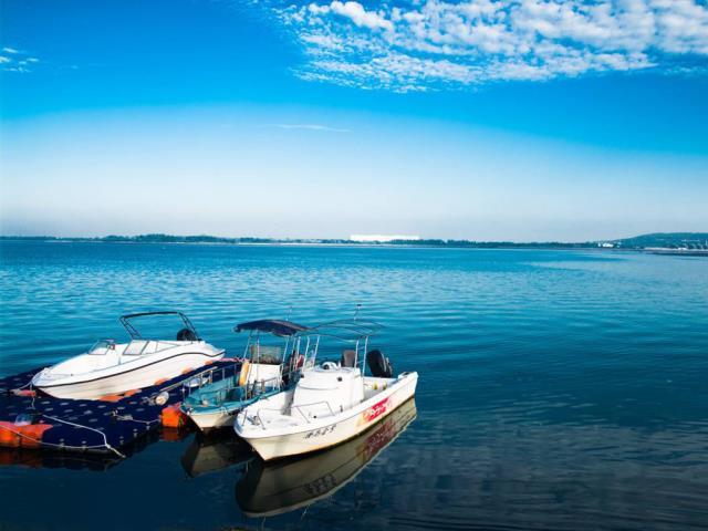 山东青岛、西海岸、烟台、威海、蓬莱、大连、旅顺5晚6日跟团游(高去飞返)
