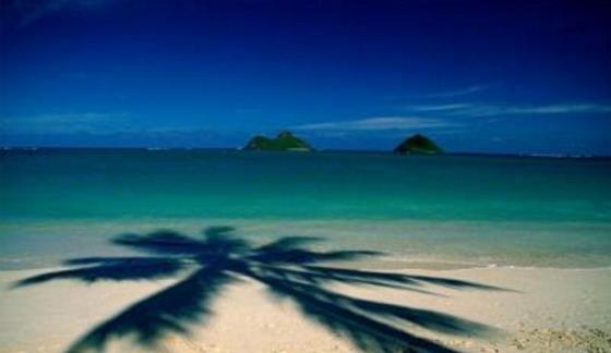 【新品】美国东西海岸+黄石+夏威夷+墨西哥+加拿大三国22日20晚